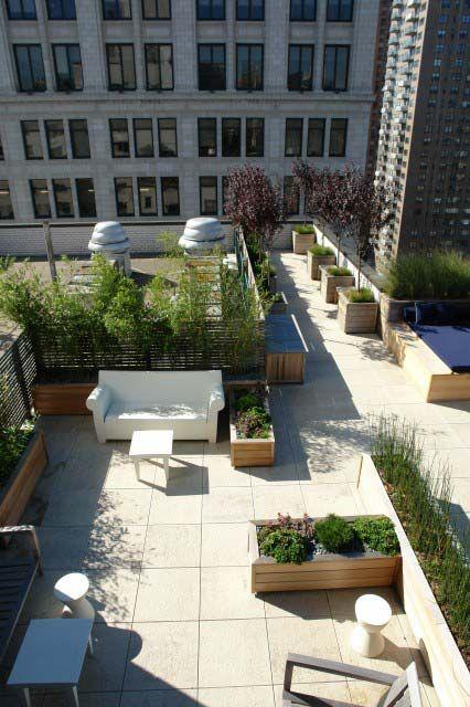 Small Garden Idea Use Bamboo For Privacy Roof Garden Rooftop Garden Terrace Garden
