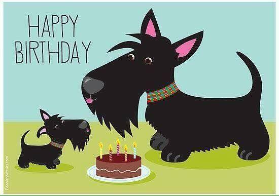 Happy Birthday Happy Birthday Dog Scottish Terrier Scottie