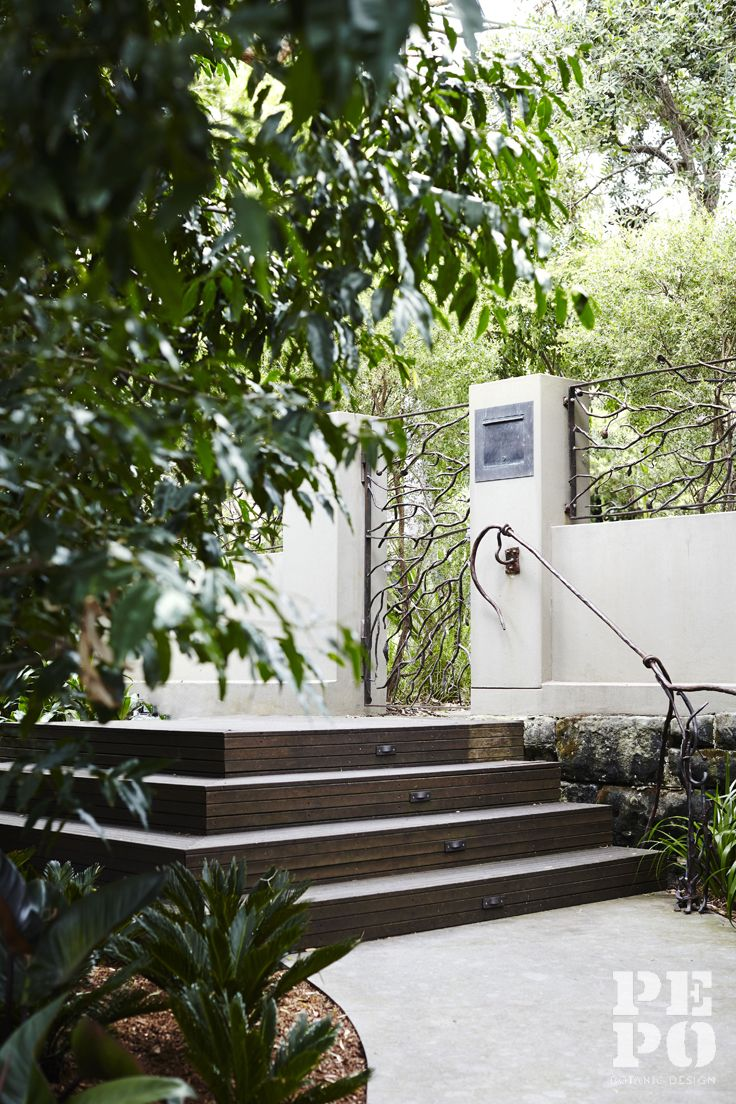 Garden entry Parsley Bay Eastern Suburbs By Pepo Botanic Design