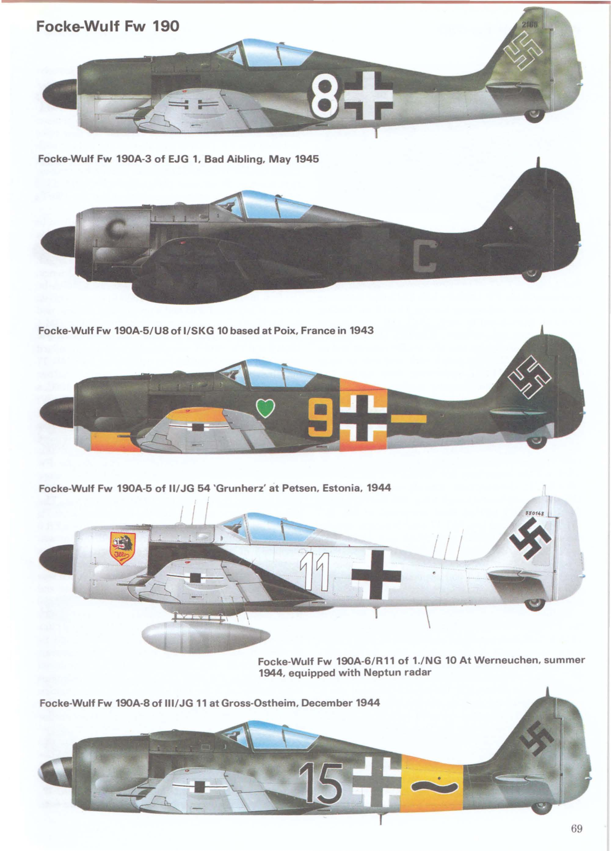 Focke-Wulf Fw 190s in a variety of configurations.
