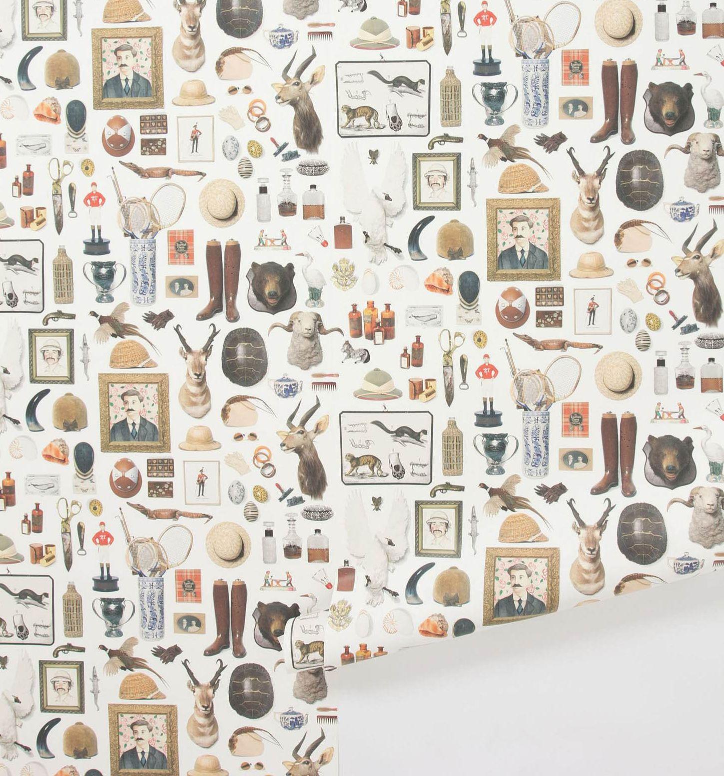 Hollister Hovey Anthropologie Wallpaper Home Wallpaper Wallpaper
