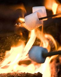 Roasted marshmellows on the bbq