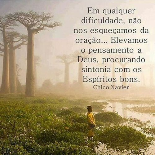 Well-known Pin by Ricardo Saito on Me | Pinterest | Frases FU73
