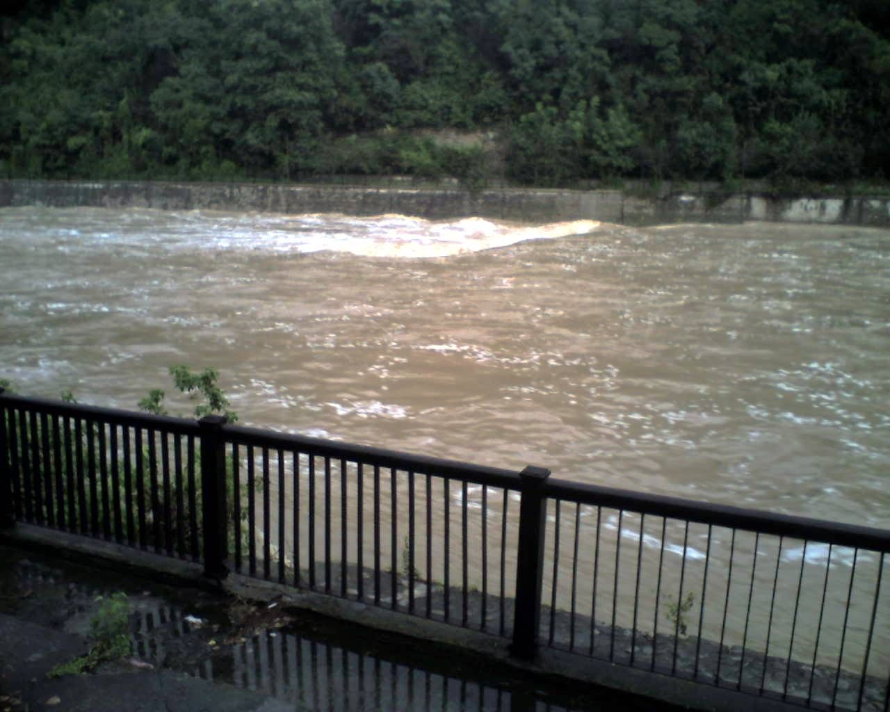 Голяма паника обхвана село до река Осъм . - http://novinite.eu/golyama-panika-obhvana-selo-do-reka-osam/