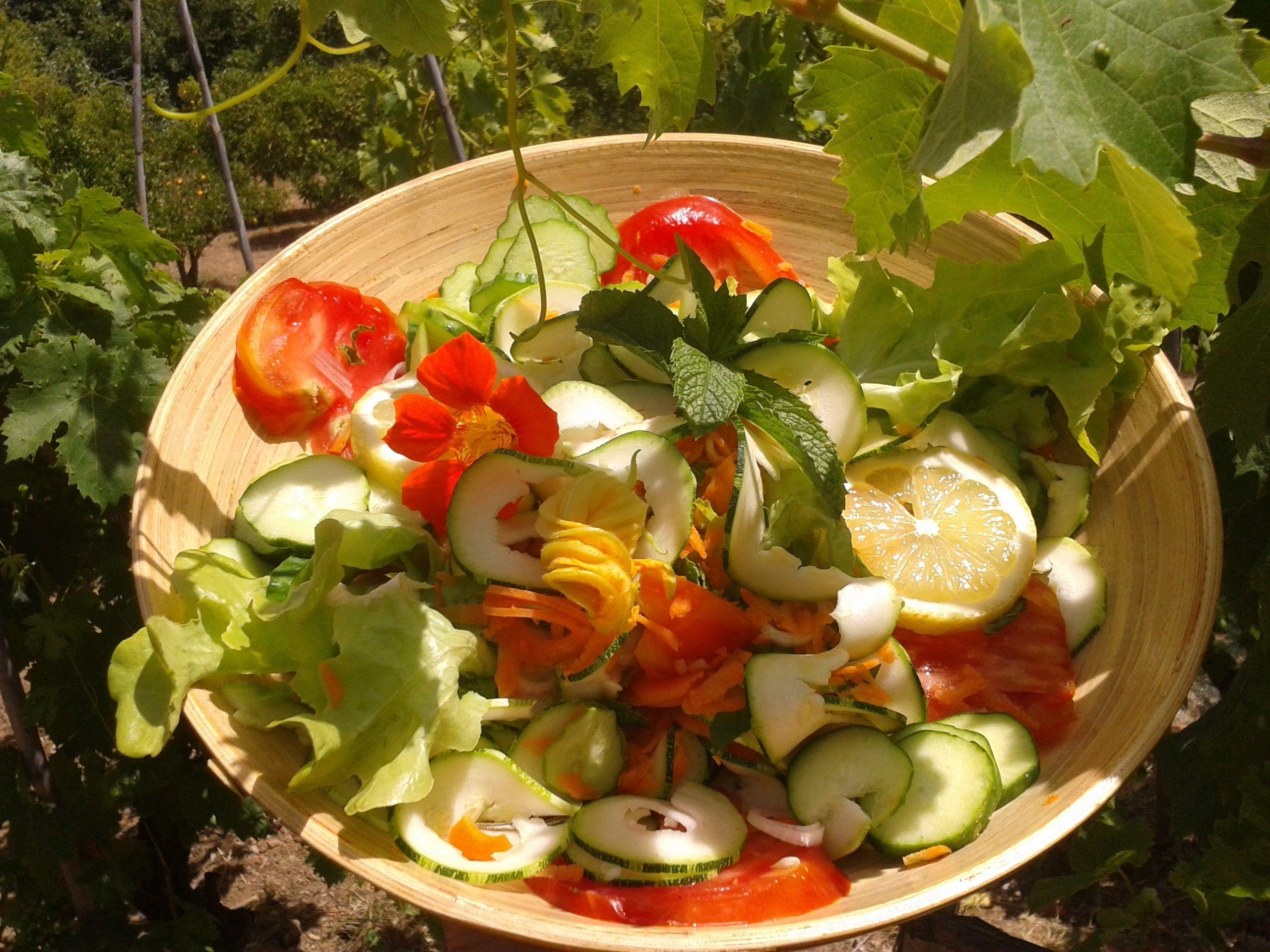 Bioaktiv Essen heißt farbenfroh essen! http://www.web-ernaehrung.de/ernahrung/bioaktiv-essen