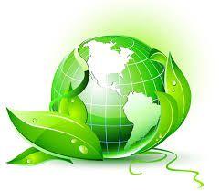 Afbeeldingsresultaat voor biomass