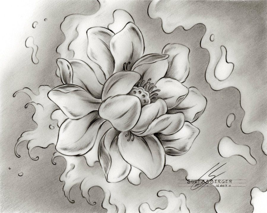 Water Lily Water Lily Tattoos Lilies Drawing Lily Tattoo