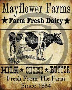 Resultado De Imagem Para Old Milk Can Labels Cow Photography Farm Prints Milk