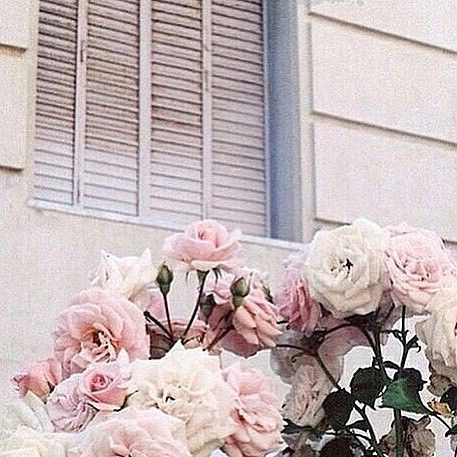 Pink/floral theme... 🌸🌷🌺🌸🌷🌸💐🌺💐🌹🌷🌺 #inspo
