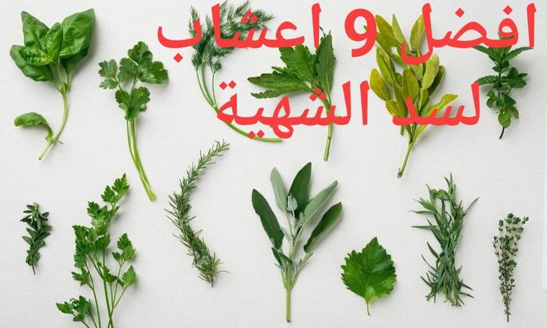 اعشاب لسد الشهية Herbs Appetite Suppressant Suppressant