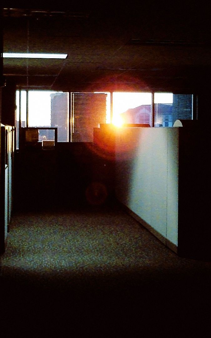 OFFICES FOR ALL! WHY OPEN-OFFICE LAYOUTS ARE BAD FOR EMPLOYEES, BOSSES, AND PRODUCTIVITY