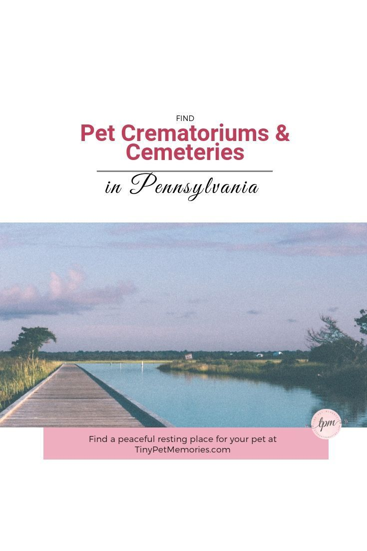 Your Pet Was Part Of Your Family Give Him Or Her A Special Place Of Eternal Rest By Finding A Petcemetery Pet Cemetery Pet Memorials Pets