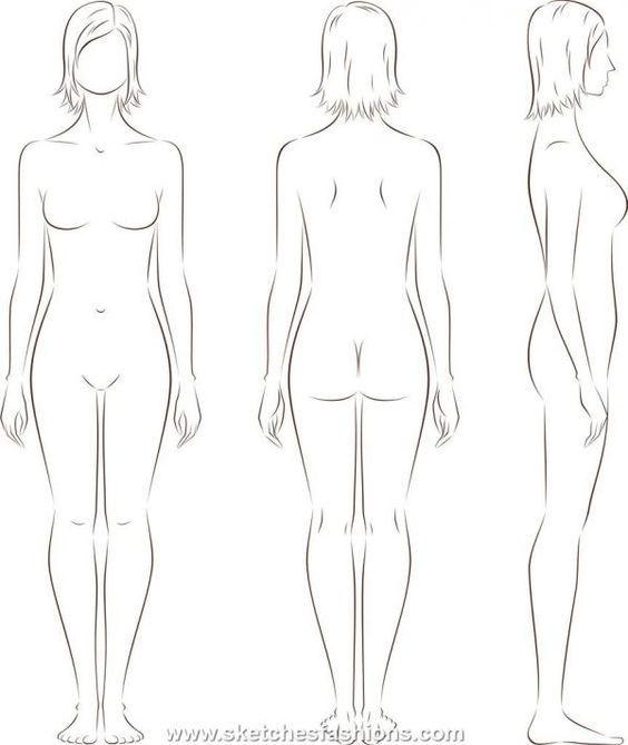 Тело спереди картинка