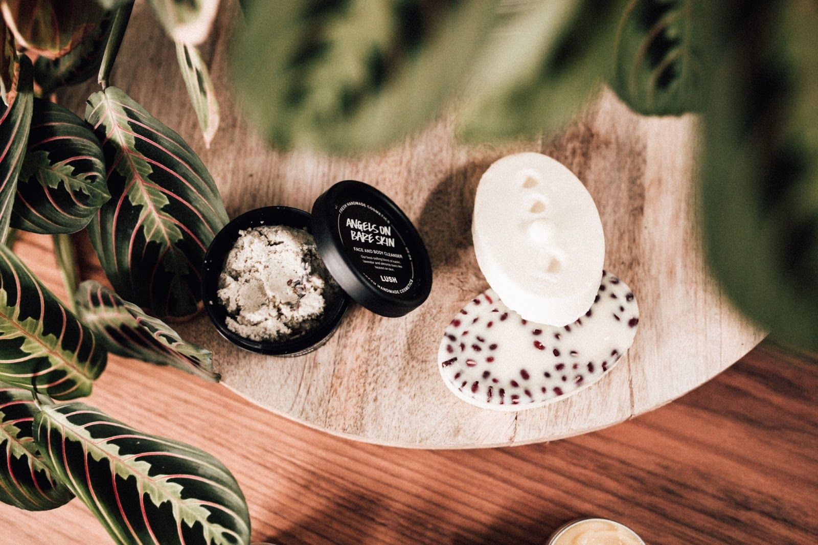 10 Zero Waste Makeup Brands Lush cosmetics, Lush