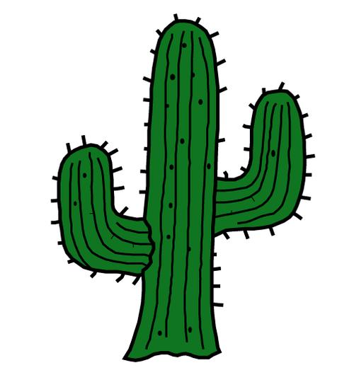 Afbeeldingsresultaat Voor Cactus Png Tumblr Pinturas Coloridas Adesivos Tumblr Como Fazer Horta