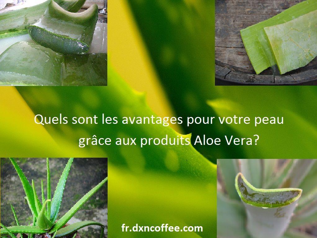 Quels sont les avantages pour votre peau grâce aux produits Aloe Vera?