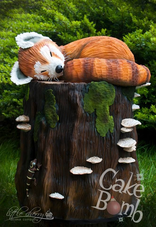 Red Panda By Little Cherry Cake Co For Cakebomb Cake Birthday