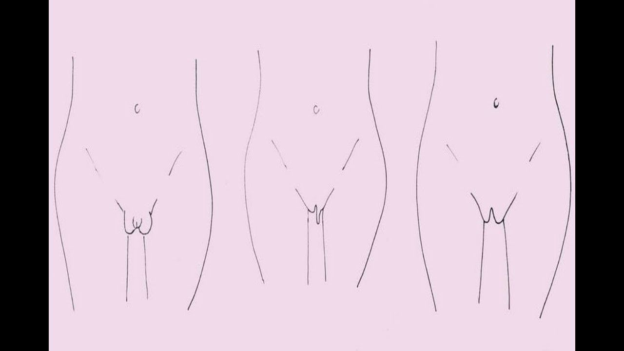 How Many Types Of Vaginas Are There? | healthy wild hack's