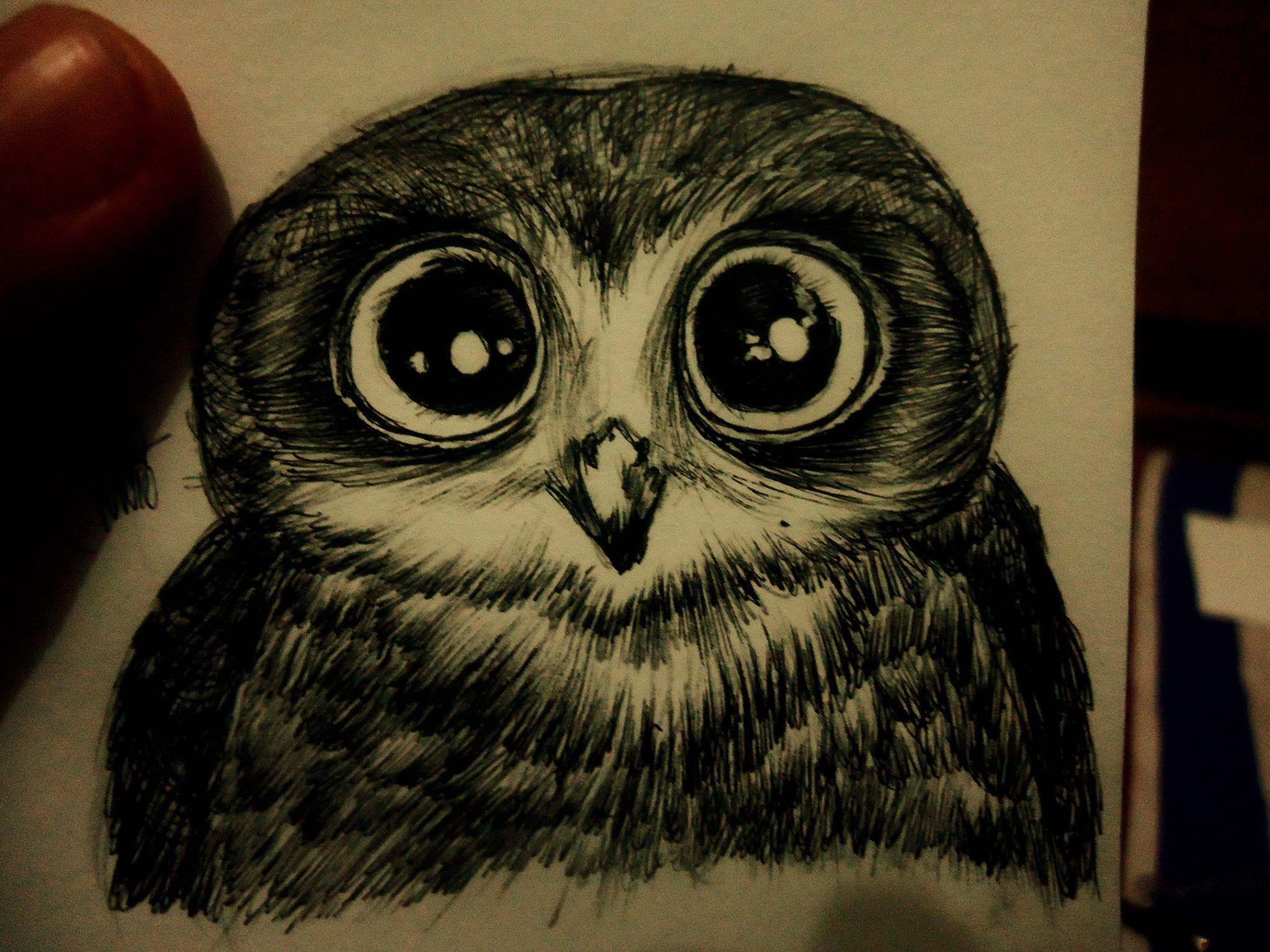 owl- Desenhos de um garoto solitário.
