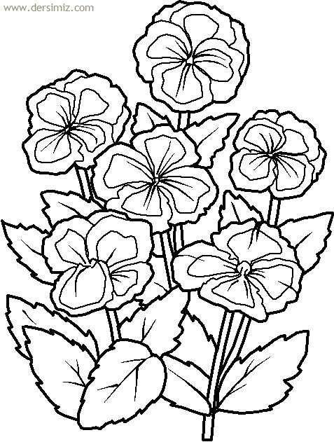 çiçekler Boyama Resmi Boyama Sayfaları Pinterest Coloring