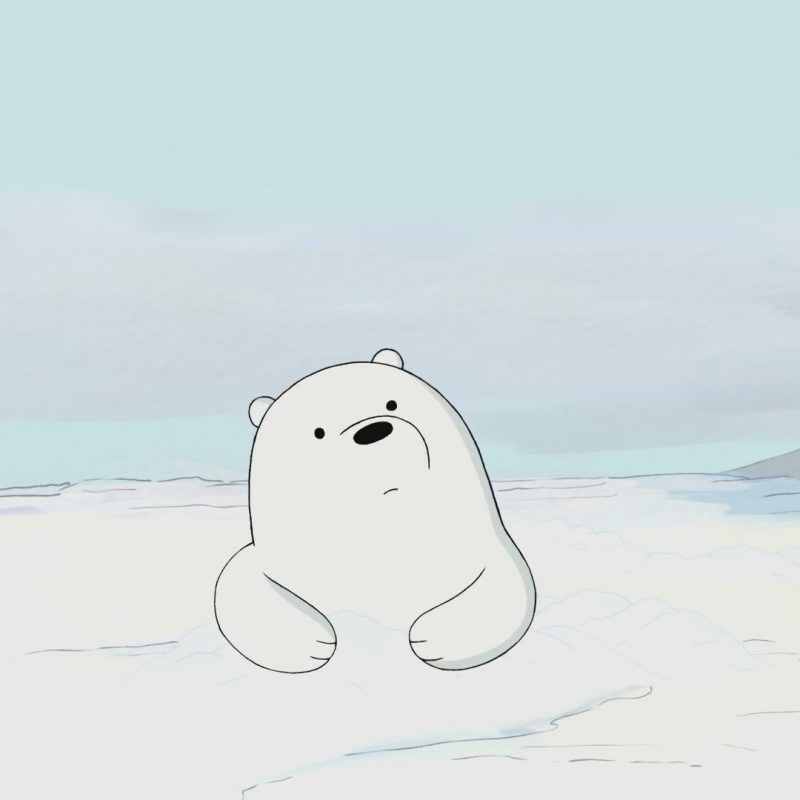 10 Top Ice Bear We Bare Bears Wallpaper Full Hd 1080p For Pc Background 2018 Free Download We Ba We Bare Bears Wallpapers Ice Bear We Bare Bears Bear Wallpaper