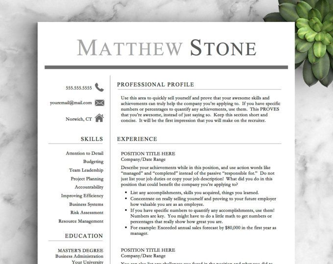 Professional Resume Template For Word  Pages  One Two And Three