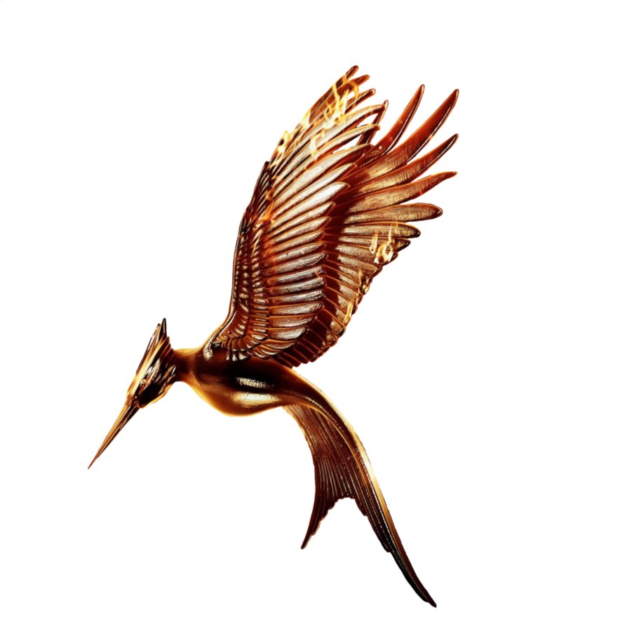 Catching Fire Movie Logo Transparent Without Ring By Allheartsgoboom On Deviantart Hunger Games Tattoo Mockingjay Tattoo Fire Movie