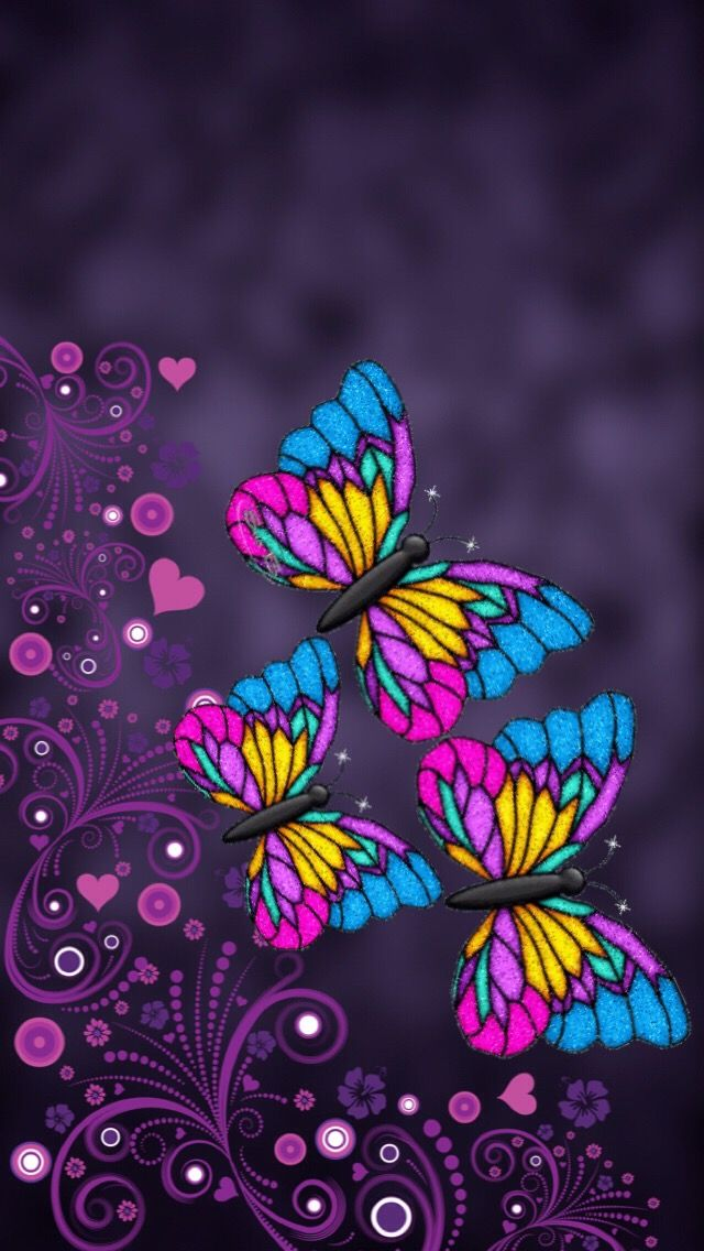 Beautiful Colorful Butterfly's...🦋 Butterfly wallpaper