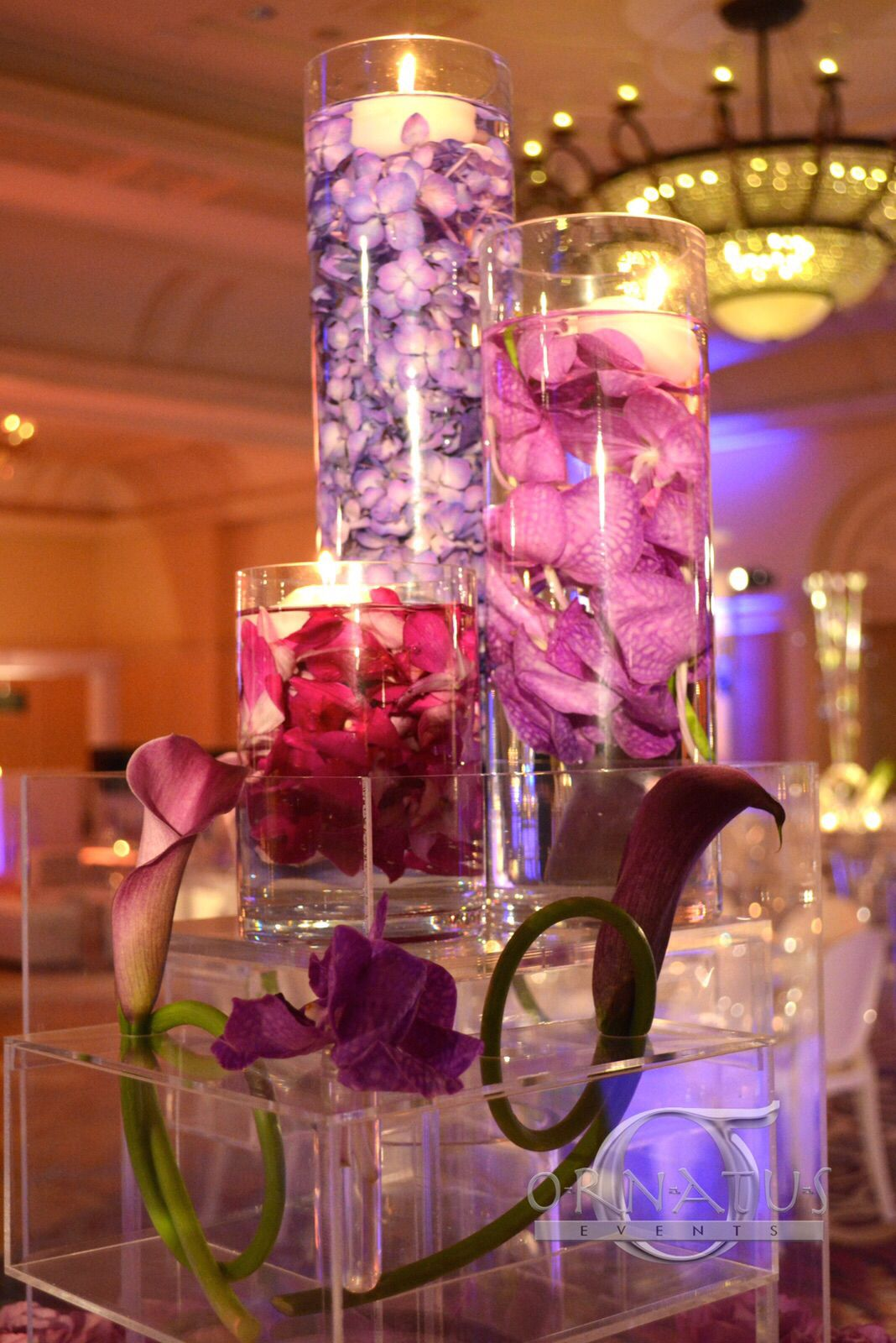 Modern wedding decoration ideas  ORNATUS EVENTS PRODUCTIONS ornatusevents Passion for Decor