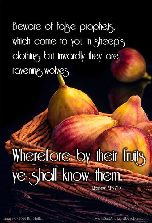 Beware of false prophets which come to you in sheep's ...
