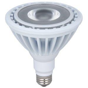 Outdoor led security light bulbs httpyungchienfo pinterest outdoor led security light bulbs aloadofball Gallery