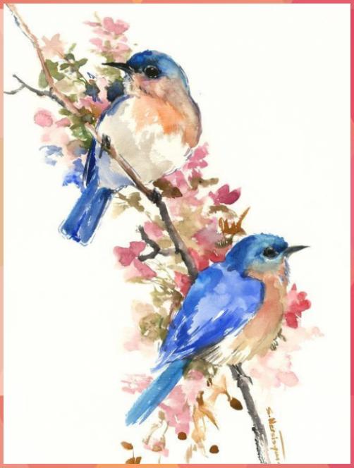 Uruguayo Bluebird Y Spring Blossom Vollfrontbild Sin Enmarcar Blossom Bluebird Enmarcar Sprin En 2020 Pintura De Pajaros Pajaro De Acuarela Ilustracion Acuarela
