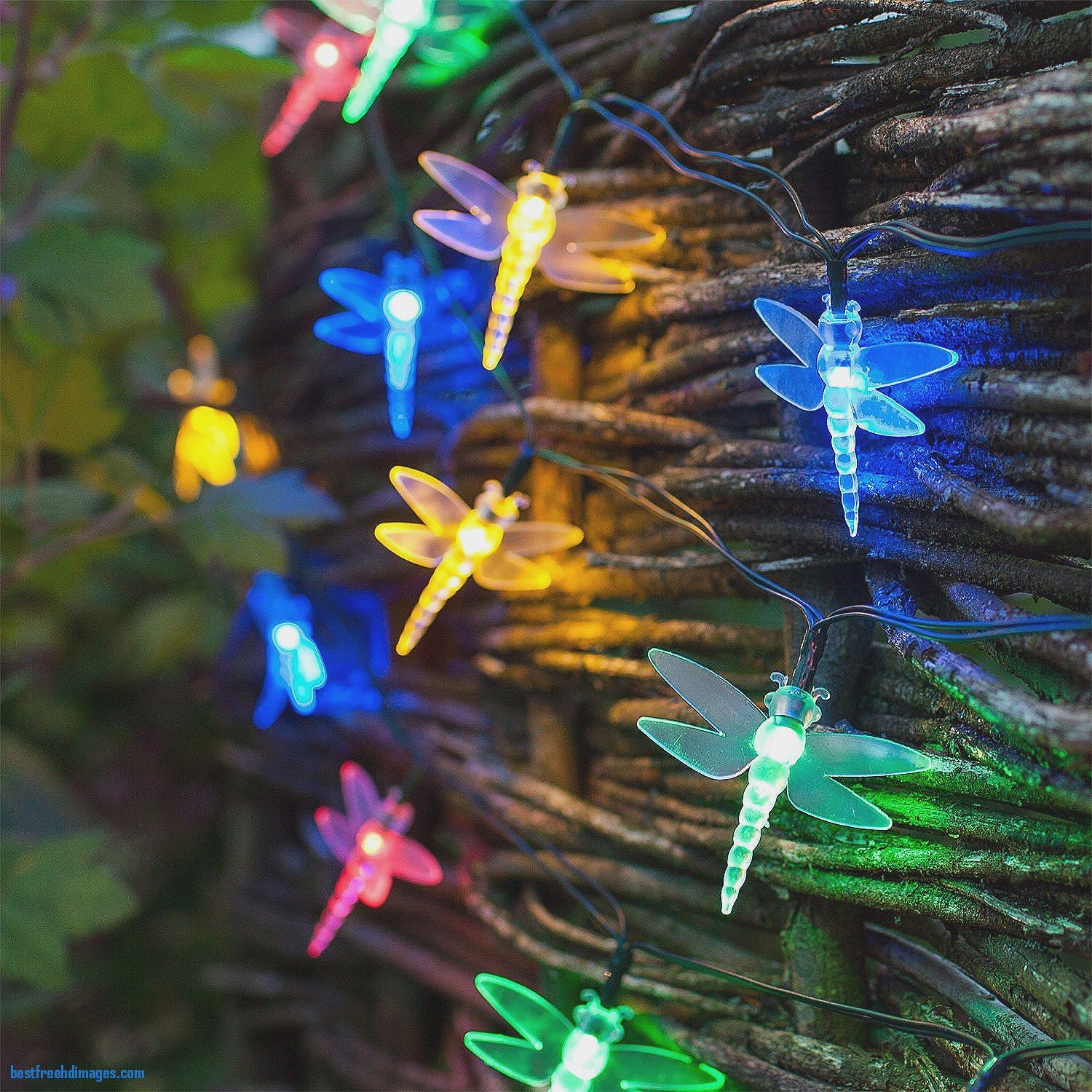 30 multi coloured led dragonfly solar garden fairy lights by solar 30 multi coloured led dragonfly solar garden fairy lights by solar christmas lights sale australia remarkable aloadofball Images