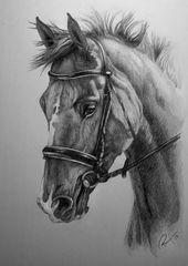 Pferdekommission von NutLu  - Art sketches #tiere #tiere bilder #tiere zitate