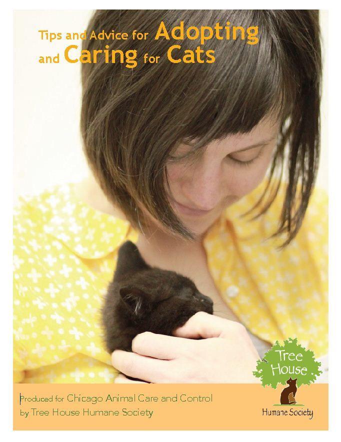 City Of Chicago Pet Adoption Humane Society Tree House Adoption