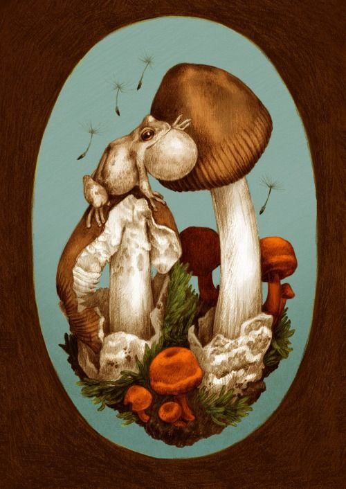 A series of mushroom illustrations! Might be printin' these up as postcards!