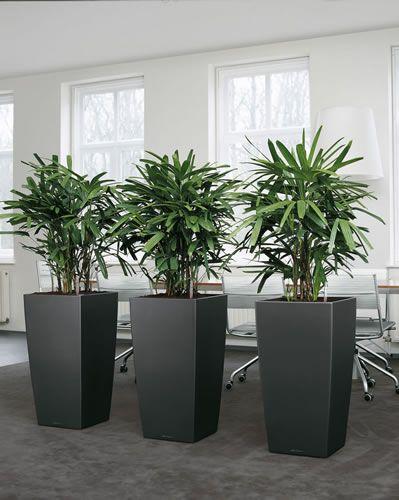 Intira Design Using Indoor Plants Tastefully Large Garden Pots Artificial Plants Artificial Plants Indoor