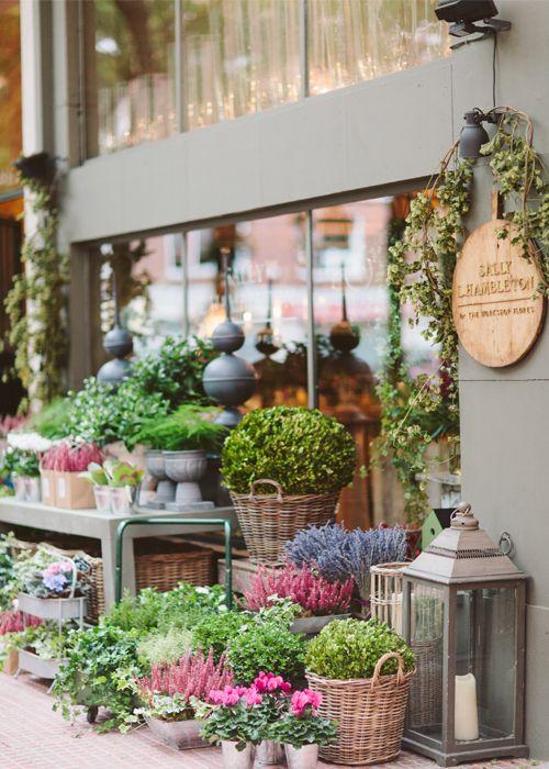 Foto interior y exterior tienda sally hambleton mi for Plan de negocios de un vivero de plantas