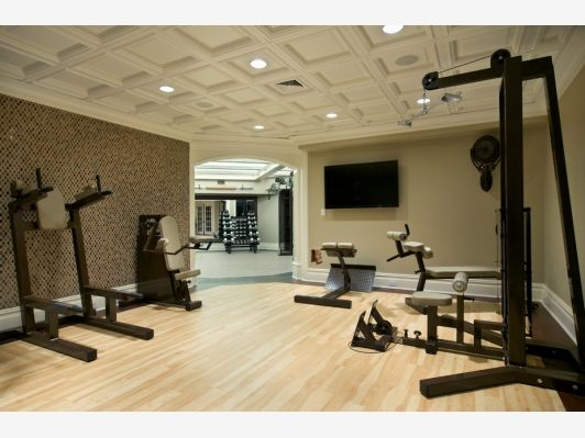 Luxury home gym and garden design idea s