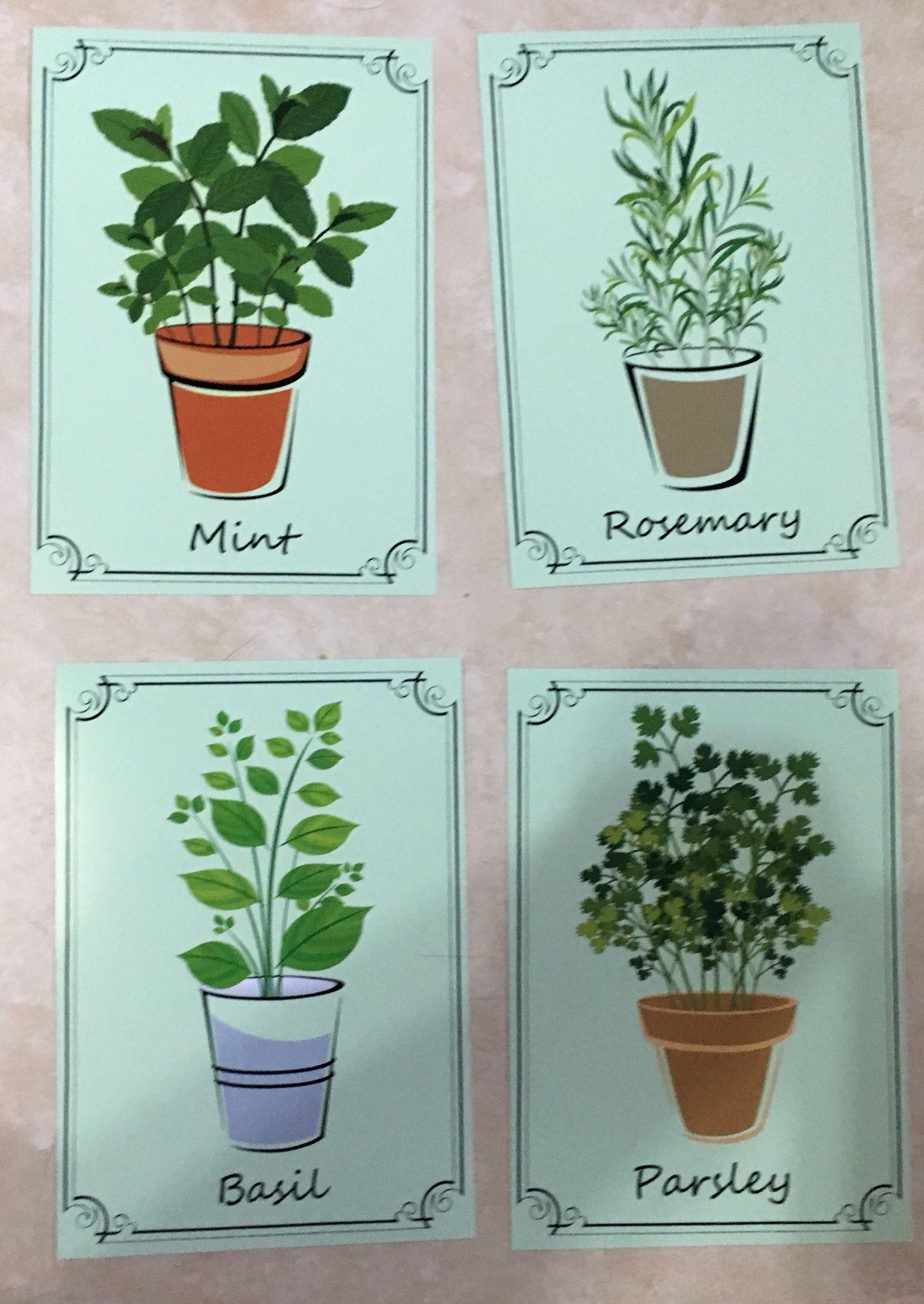 Herb Pots Wall Art Prints - Decorative Kitchen Decor (5x7, Green) by ...