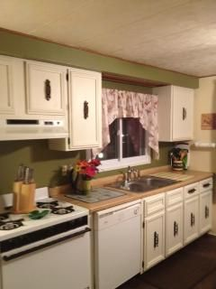 Kitchen - Bright and cheery! So cute and vintage. 1977 ... on holly mobile homes, detroit mobile homes, 2012 skyline modular homes, kitchen floor plans for mobile homes, chandeleur mobile homes, park model mobile homes, adrian mobile homes, triple wide mobile homes, howell mobile homes, owosso mobile homes, waterford mobile homes, lexington mobile homes, michigan mobile homes, taylor mobile homes, warren mobile homes, golden west mobile homes,