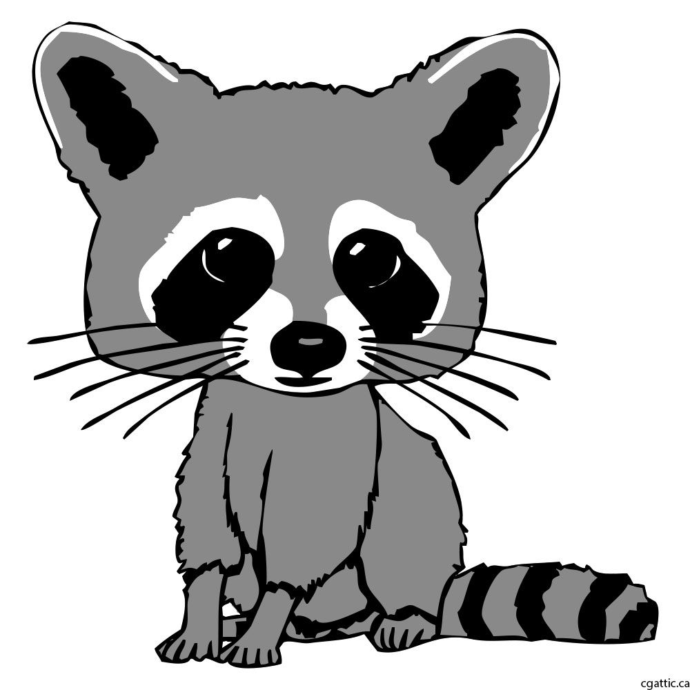 Cartoon Raccoon Drawing In 4 Steps With Photoshop Raccoon Drawing Cartoon Drawings Drawings