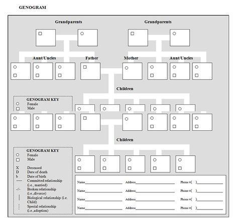 Genogram Templates  Free Word Pdf Psd Documents Download