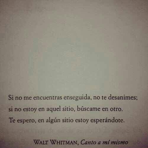 Te Estoy Esperando Walt Whitman Frases Frases De