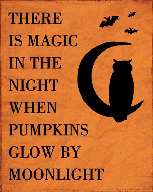 Charmant Pumpkins Glow By Moonlight Quotes Quote Car Moon Moonlight Halloween  Halloween Pictures Happy Halloween Halloween Images