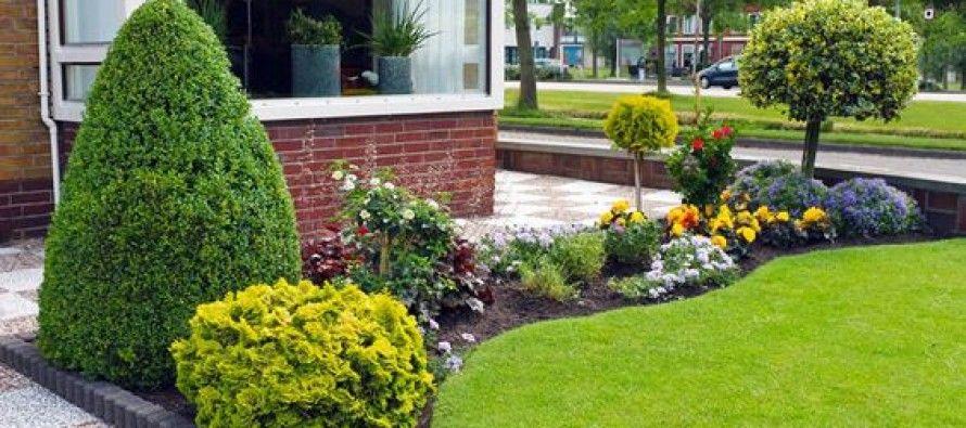 Ideas para jardines traseros | Patios
