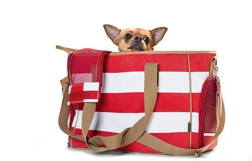 German Designer Carrier Bag