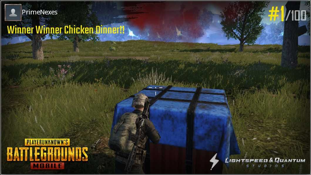 What Fortnight Pc Lacks And Pubg Mobile Has A Chicken Dinner