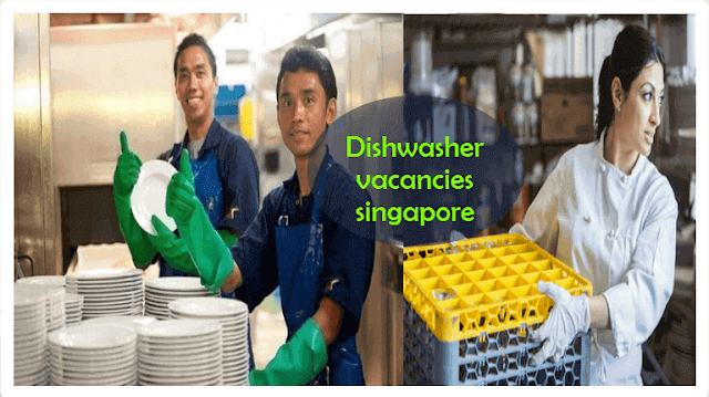 Dishwasher Vacancies Singapore In 2021 Dishwasher Singapore Laboratory Science