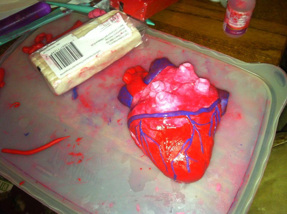 DIY POLYMER CLAY HEART MODEL. Cardiovascular system 3D